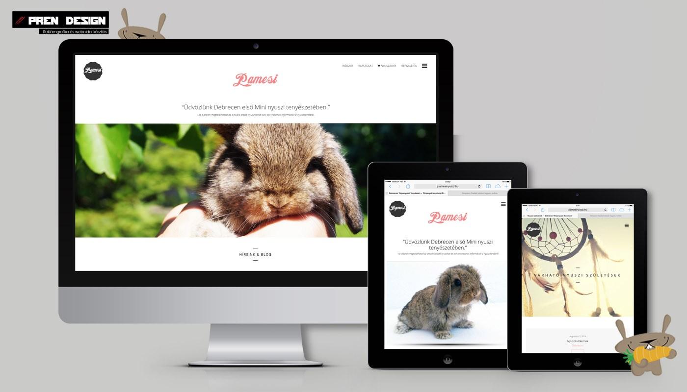 Debrecen honlap készítés és weboldal készítés