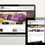 Balassagyarmat weboldal készítés
