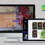 Székesfehérvár weboldal készítés és webáruház készítés
